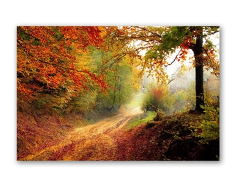 Autumn Wall Art Printed on Glass or Acrylic