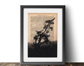 Nature book page | calm art |  tree print | book page art |  nature lover print | nature art | foggy forest | industrial design | tree page