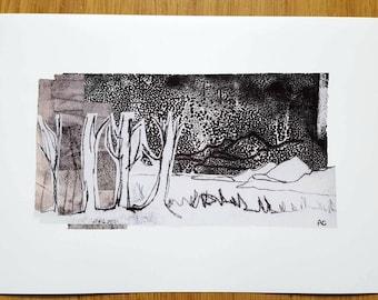 Highland Forest - A4 Print - Scotland