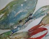 Maine Blue Crab Original ...