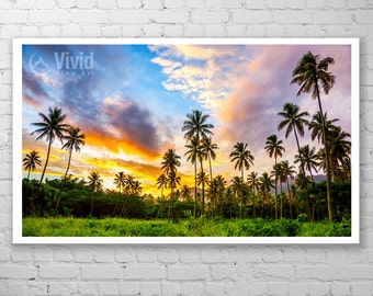 Palm Tree Photograph, palm tree picture, palm trees at sunset, palm tree wall art, tropical wall print palm tree art, framed palm tree print