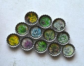 Succulent Cactus Bottlecap Magnets- Succulent Decor- Plant Decor- Kitchen Decor- Fridge Magnets- Succulent Party Favors- Garden Gift