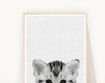 Kitten Print, Nursery Wall Art, Cat Art Print, Cute Animal, Printable Art, Wall art, Wall Decor, Instant download, Kids Room Decor