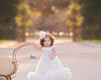 Cute Baby Silk Bodice Feather Dress
