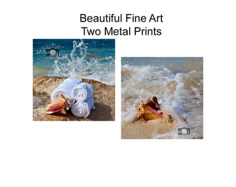 Photography, Art, Two Metal Prints, Ocean Spa and Seashell in Surf