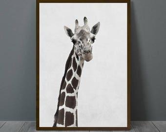 Giraffe Print, Giraffe Wall Decor, Giraffe Poster, Giraffe, Animal Print Wall Decor, Printable Giraffe Wall Art