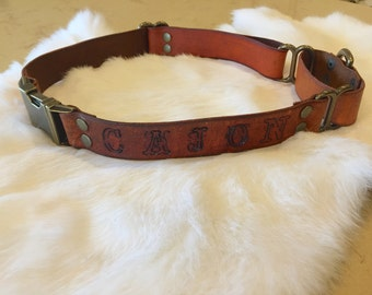 Ready-To-Ship Brown Leather Martingale Dog Collar With Quick-Release Buckle
