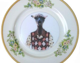 "Timmy the Alpaca Portrait Plate 6.5"""