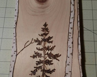 Moonlit Skies - Birch Tree Pyrography Wood Burning