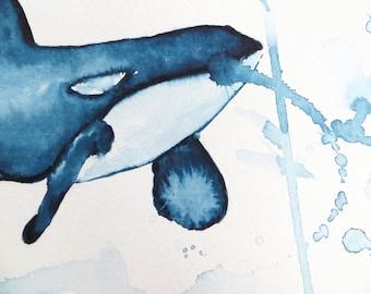 Orca Whale Watercolour Original Painting