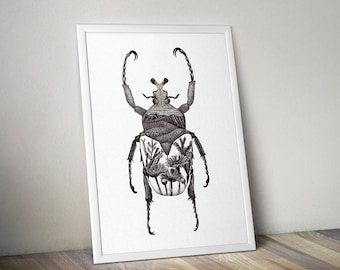 Beetle with flowers print