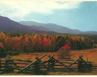 Vintage 1980s Postcard Tennessee Great Smoky Mountains National Park Cades Cove Overlook Fall Leaves Photochrome Era Postally Unused