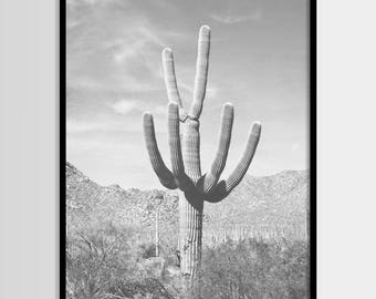 Cactus Print, Desert Art, Photography, Arizona, Cactus art, South Western Modern Decor, Black White Photo, Digital Instant Download 16x20