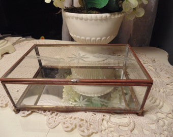 Vintage Glass Case/Glass and Brass Terrarium/Jewelry Box