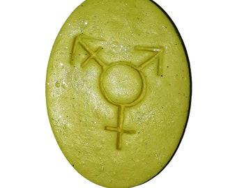 Trans Symbol Magnet