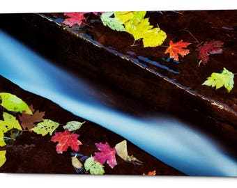 "Giclee Canvas Wall Art ""A Cut in the Terrace"""