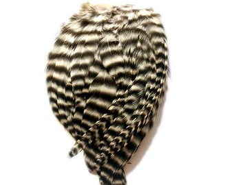 Back White Grizzly Striped FEATHER PADS for crafting or fly tying Rooster feathers