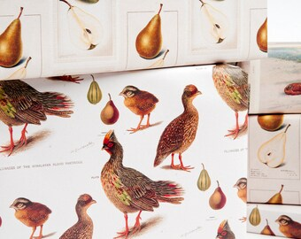 Partridge & Pear Gift Wrap / 12 Sheets