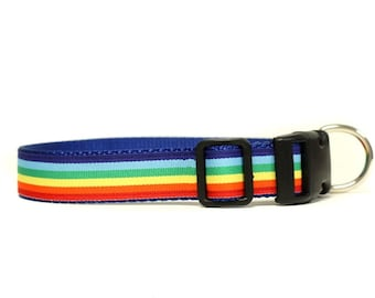1 Inch Wide Dog Collar with Adjustable Buckle or Martingale in Rainbow Stripes