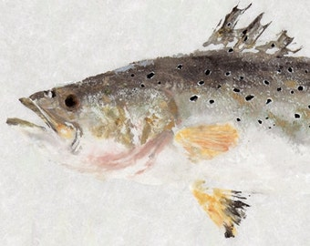 Spotted Seatrout - Gyotaku Fish Rubbing - Limited Edition Print (20.25 x 8.75)