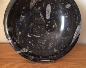 Large Fossil Orthoceras Bowl/Dish,Fossils