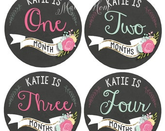 PERSONALIZED, Baby Girl Month Stickers, Baby Girl Monthly Stickers, Bodysuit Stickers, Roses, Nursery Decor, Milestone Stickers
