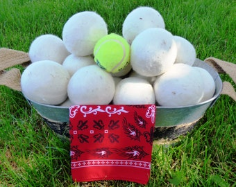 "All Natural Wool Dryer Balls.  Set of 6 Dryer Balls   Support ""Shepherds Gift: GM1 for HD"" Non-Profit. (FREE SHIPPING!)"
