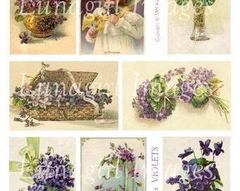 VIOLETS digital collage sheet, Victorian purple flowers, lavender floral vintage images art cards, bouquets baskets spring ephemera DOWNLOAD