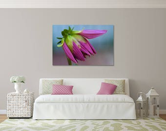 Beautiful Gallery Wrapped Canvas Purple Dahlia Bloom Photograph