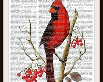 Red Cardinal-Bird- Vintage Dictionary Art Print---Fits 8x10 Mat or Frame