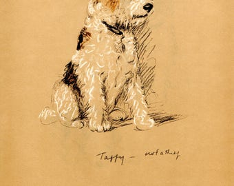 1937 Vintage Color Dog Print LUCY DAWSON Taffy the Wire-Haired TERRIER