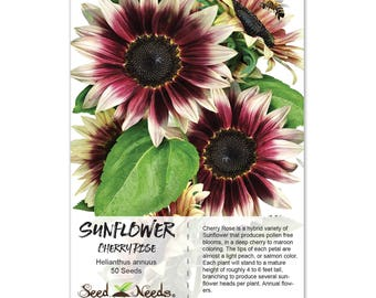 Sunflower Seeds, Cherry Rose (Helianthus annuus) Non-GMO Seeds by Seed Needs