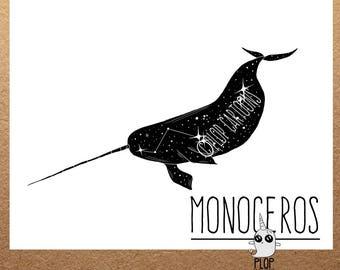 Narwhal Monoceros Constellation Art Print