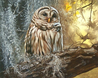 "Barred OWL wildlife bird print by RUSTY RUST 11"" x 17"" heavy paper, 11"" x 12.75"" appx. image size / O-70"