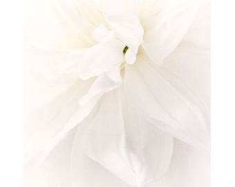 White Dahlia Art Print, Floral Art Print, Wedding Decor,  Fine Art Photography, Ethereal Wall Art, White Decor
