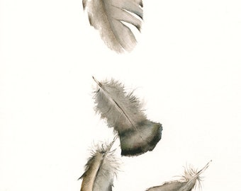 watercolor painting- nature art, feather art,Turkey Feathers No. 2 Archival print