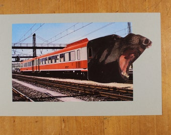 Original collage - Rails