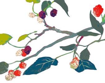 Maulbeere, Druck, Kunstdruck, Wanddekoration, Zweig, Beeren, Seide