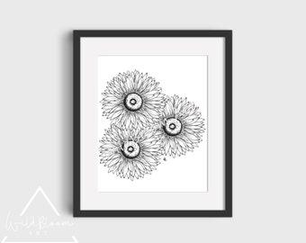 Digital Download - Gerberas art print, 5x7, 8x10, 11x14, wall art, botanical flower art, pen and ink drawing, printable art, hand drawn