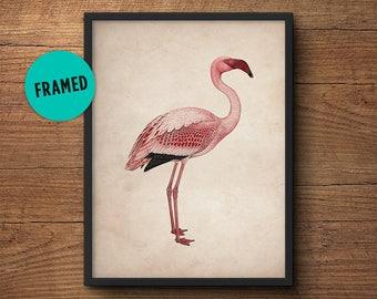 Flamingo print art, Framed art, Flamingo wall print, Flamingo poster, Pink flamingo, Flamingo wall art, Flamingo art, Flamingo wall decor