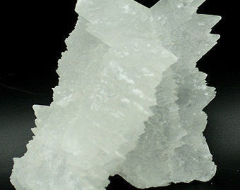 Two Intergrown 'Fishtail' Selenite Crystals  - Mineral Specimen for Sale