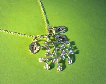 Twig / Branch Family Tree Pendant Necklace, Olive Branch, Belle Necklace in Silver, Add your birthstones to personalize your family tree