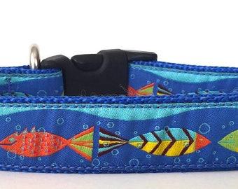 Fish Ribbon Dog Collar
