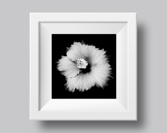 Hibiscus Black and White Flower Print, Contemporary Flower Wall Art, Digital Download, Photography Print, Original Printable Art