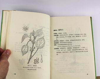 1983 Yi Tribe from Yunan Region Traditional Chinese Medicine (TCM) Herbal Book with Plant Diagrams