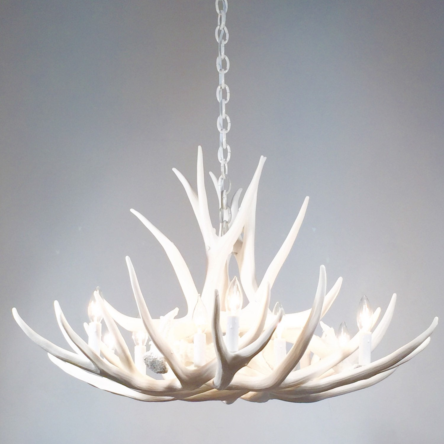 home decorating moose decor ideas chandelier antler real sconce