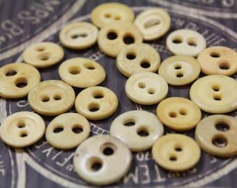 Antique Bone Buttons 22 Underwear Bone Button Two Hole 1930's Bone Buttons