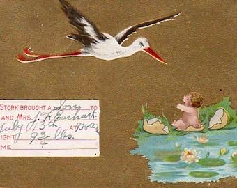 VINTAGE POSTCARD, part de la naissance, recueillis par junqueTrunque