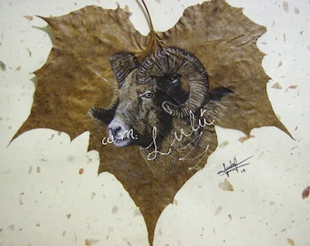printing, gorgeous, Ram, pastel, pencil, technique, drawing, on, real leafe