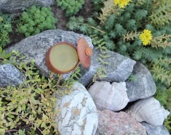 Organic Aloe Vera Salve Aloe Vera Body Salve Vegan salve Natural aloe salve Moisturizing salve Aloe moisturizer Aloe Vera treatment salve